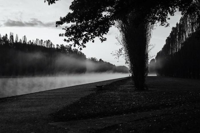 Bord de rivière avec brume - Emma Jane Browne